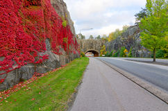 Autumn road to the Karshamn city Stock Images