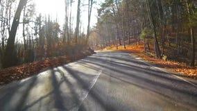 Autumn road stock video footage