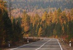 Autumn Road Trip a través de Siberia Imagenes de archivo