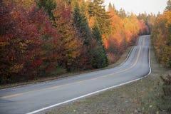 Autumn road. Winding autumn road at sunset Stock Image