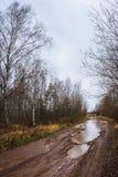 Autumn roads around Palekh, Vladimir region, Russia Royalty Free Stock Images