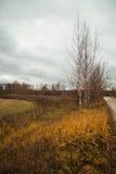 Autumn roads around Palekh, Vladimir region, Russia Stock Images