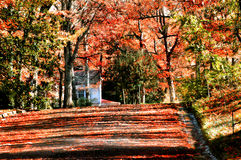 Autumn at Roads End. Beautiful fall foilage covers the road and skyline of the Autumn picture.  Orange and red mix to color all of the photo.  A white house sits Stock Photos