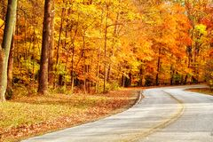 Autumn Roadway Royalty Free Stock Photos