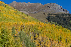 Autumn in the Rockies Stock Photos