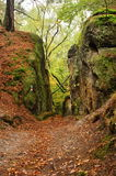 Autumn in the rocks Royalty Free Stock Images