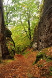 Autumn in the rocks Royalty Free Stock Photo