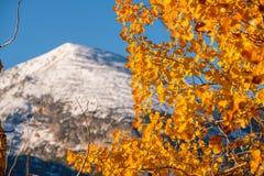 Autumn in Rocky Mountains, Colorado. Autumn in Rocky Mountain National Park. Colorado, USA Royalty Free Stock Photography