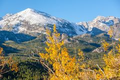 Autumn in Rocky Mountains, Colorado Royalty Free Stock Image