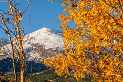 Autumn in Rocky Mountains, Colorado Royalty Free Stock Photography