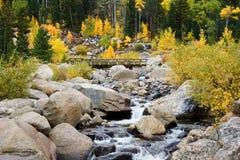 Autumn in the Rocky Mountains. Autumn color along a Rocky Mountain stream Stock Image