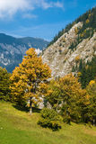 Autumn in Romania Royalty Free Stock Images