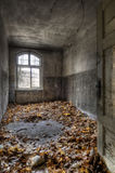 Autumn in the room. The old hospital complex for lung diseases in Beelitz near Berlin which is abandoned since 1992 Stock Photography