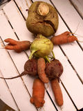 Autumn root crops figure Royalty Free Stock Photography