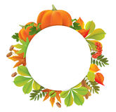 Autumn round banner with pumpkins Stock Image