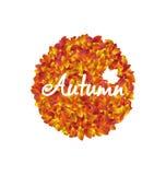 Autumn Round Frame avec des feuilles d'orange et de jaune Images libres de droits