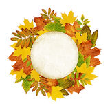 Autumn round frame from dry colored leaves Royalty Free Stock Photography