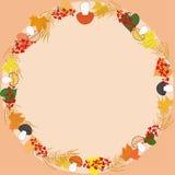 Autumn round frame Royalty Free Stock Photo