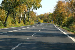 Autumn route between trees. Autumn asphalt route with trees royalty free stock photography