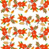 Autumn Rowan Berry Seamless Background Ilustra??o do vetor ilustração do vetor