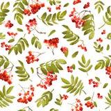 Autumn Rowan Berry Seamless Background Modelo floral de la caída con las hojas y las bayas Fotos de archivo libres de regalías