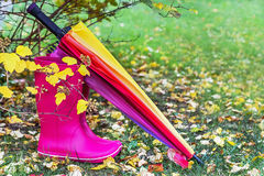 Autumn. Rubber boots and colorful umbrella are on the grass with autumnal leaves. Stock Images