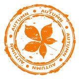 Autumn rubber stamp vector Stock Photo