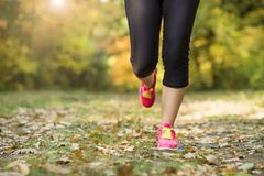 Autumn runner Royalty Free Stock Images