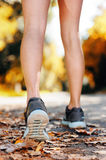 Autumn runner feet Royalty Free Stock Images