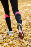Autumn running. Running concept. Female legs running forward with white trainers over a ground full of autumn leaves royalty free stock photo