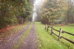 Autumn Rural Driveway Stock Image