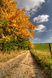 Autumn rural landscape Stock Image