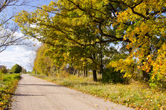 Autumn rural landscape Royalty Free Stock Images