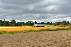 Autumn rural landscape Stock Photo