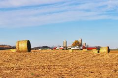 Agriculture and farming background. Royalty Free Stock Image