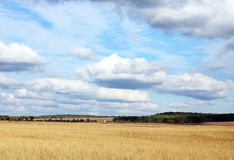 Autumn rural landscape with blue sky and white clouds Royalty Free Stock Images