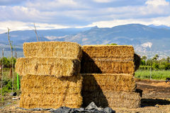 Autumn rural landscape with hay bale, and farm Royalty Free Stock Photos