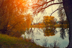 Autumn rural landscape Royalty Free Stock Photography