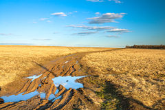 Autumn rural landscape with the  road Stock Photography