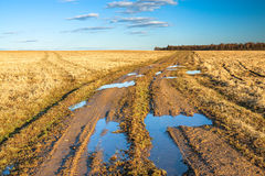 Autumn rural landscape with the  road Royalty Free Stock Images