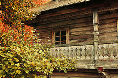 Autumn rural landscape - small house among the trees. Wooden house among the yellowed trees - autumn rural landscape in cloudy weather, vintage and tonal Stock Photography