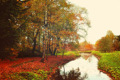 Autumn rural landscape with trees near the river Royalty Free Stock Photography