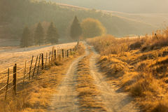 Autumn rural path Royalty Free Stock Photo