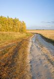 Autumn rural road and field Stock Images
