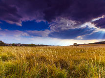 Autumn rural scenery with stormy sky Stock Photography