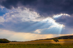 Autumn rural scenery with stormy sky Royalty Free Stock Photo