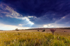 Autumn rural scenery with stormy sky Royalty Free Stock Image
