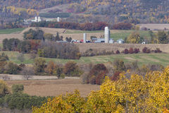 Autumn Rural Scenic Stock Photography