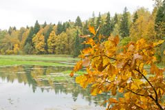 Autumn in Russia Royalty Free Stock Photo