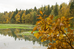 Autumn in Russia Royalty Free Stock Photos